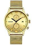CADISEN Cronógrafo Oro clásico Impermeable 43 mm Caso de Cuarzo para Hombre Relojes con Malla de Acero Banda C2023MGGG